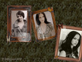 eva-green - Eva Green wallpaper