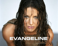 Evangeline Lilly - evangeline-lilly wallpaper