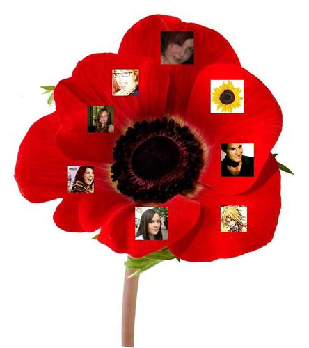 Fan Poppy #3 (with AmazonDebs) - the-fanpoppy-awards Photo