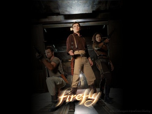firefly images firefly hd wallpaper and background photos