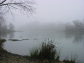 Fog by American River - california photo