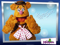 Fozzie Bear - the-muppets wallpaper