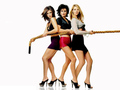 Friends - The Girls - friends wallpaper