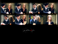 Friends - ross-and-rachel wallpaper