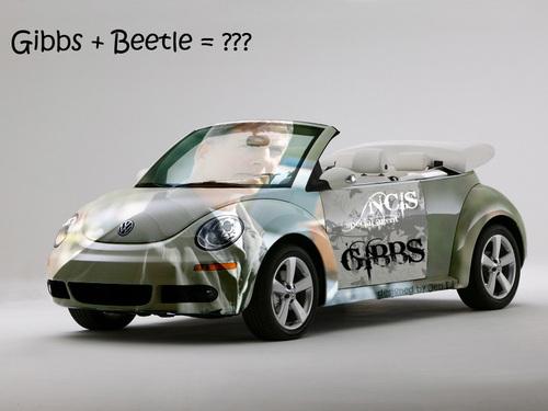 Gibbs + Beetle = ?