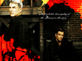 ncis - Gibbs & Tony wallpaper