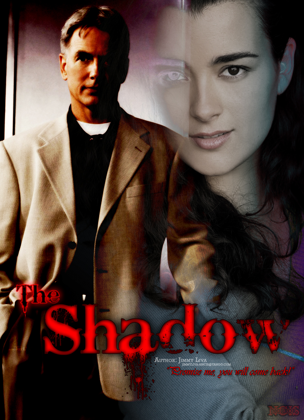 NCIS Gibbs and Ziva in The Shadow