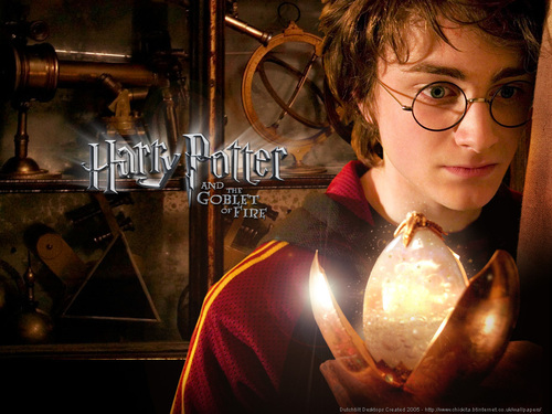 Goblet of Fire: Harry