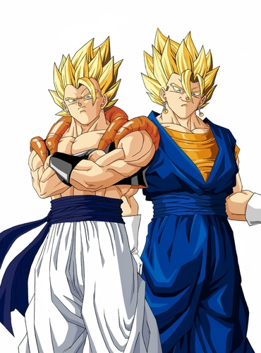 Gogeta and Vegito - dragon-ball-z Photo