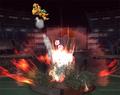 Great Aether - super-smash-bros-brawl photo