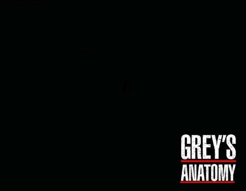 Grey Anatomy Logo