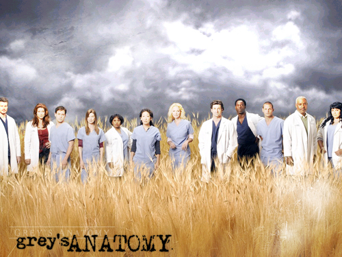 Grey's Anatomy 바탕화면