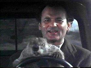 Groundhog hari