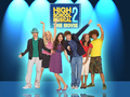 HSM 2 - high-school-musical-2 fan art