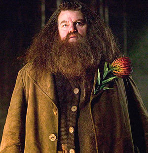 http://images.fanpop.com/images/image_uploads/Hagrid-rubeus-hagrid-299282_300_310.jpg