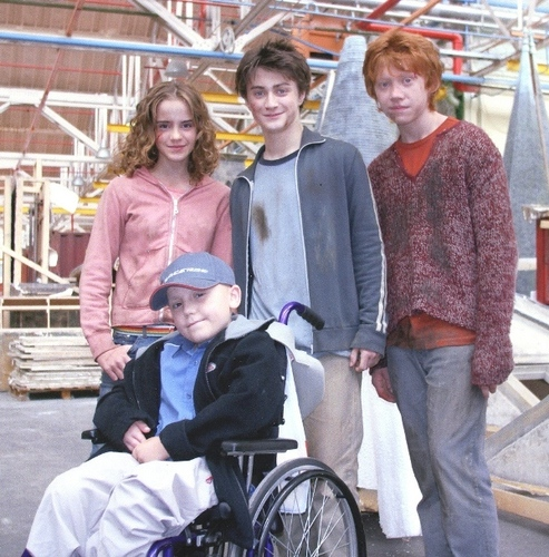 Harry, Ron and Hermione দেওয়ালপত্র titled Harry, Ron, Hermione