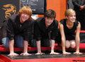 Harry, Ron, Hermione