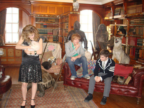 Harry, Ron, Hermione - harry-ron-and-hermione Photo