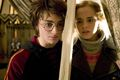 Harry Hermione - harry-potters-women photo