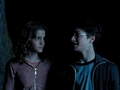 Harry/Hermione - harry-potters-women photo