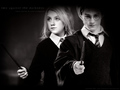 Harry Luna