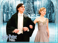 Harry Potter - clemence-poesy wallpaper