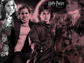 Harry hermione 1 - hermione-grangers-men wallpaper