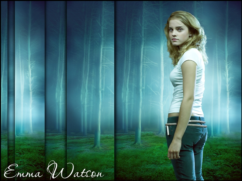 http://images.fanpop.com/images/image_uploads/Hermione-harry-potter-39802_800_600.jpg
