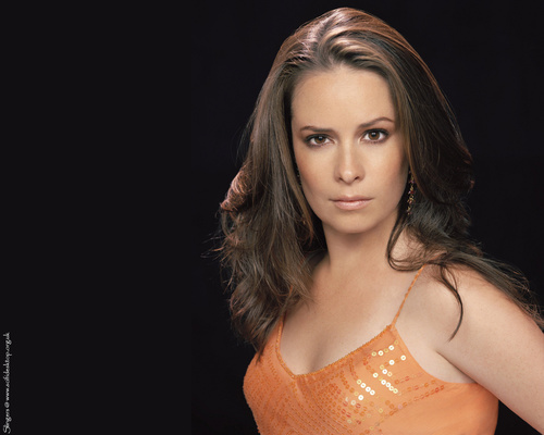 Piper Halliwell wallpaper entitled Holly Marie Combs