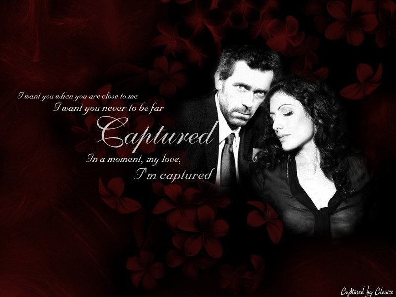 Huddy Wallpaper - House M.D. Wallpaper (271133) - Fanpop