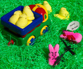 Hunting with the Vice Peep - marshmallow-peeps photo