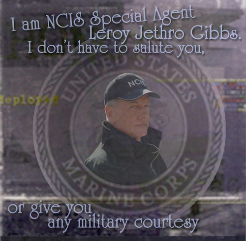 I Am GibbsWallpaper - ncis Photo
