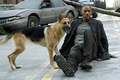 I Am Legend - upcoming-movies photo