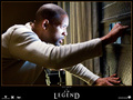 I Am Legend - will-smith wallpaper