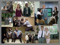 I Heart Huckabees - jude-law wallpaper