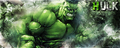Incredible Hulk - the-incredible-hulk fan art