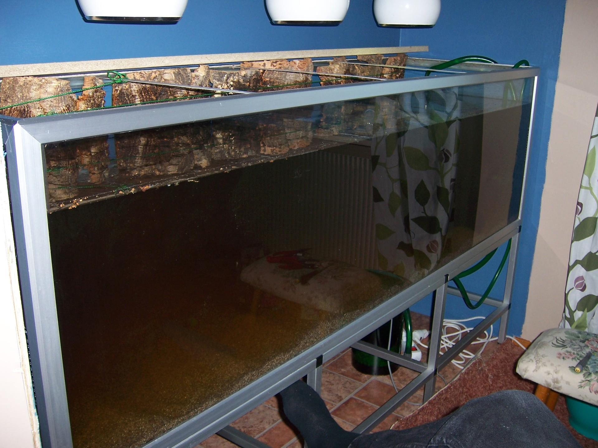 Wall Aquarium Installation