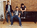 JONAS BROS - disney-channel-stars photo