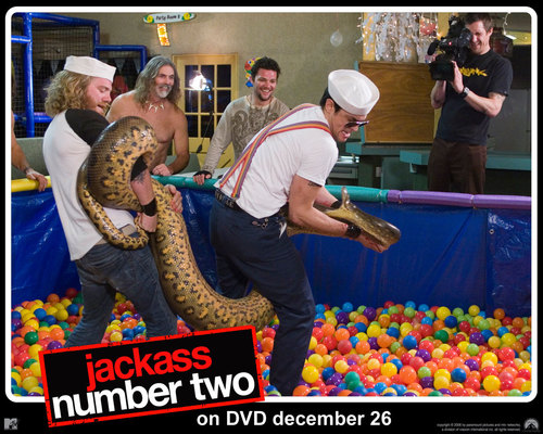 Johnny Knoxville 바탕화면 entitled Jackass Number Two