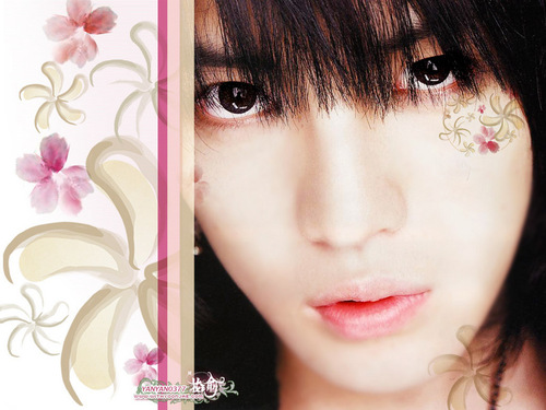 DBSK wallpaper titled Jaejoong wallpaper