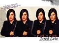 Jared - 30-seconds-to-mars wallpaper