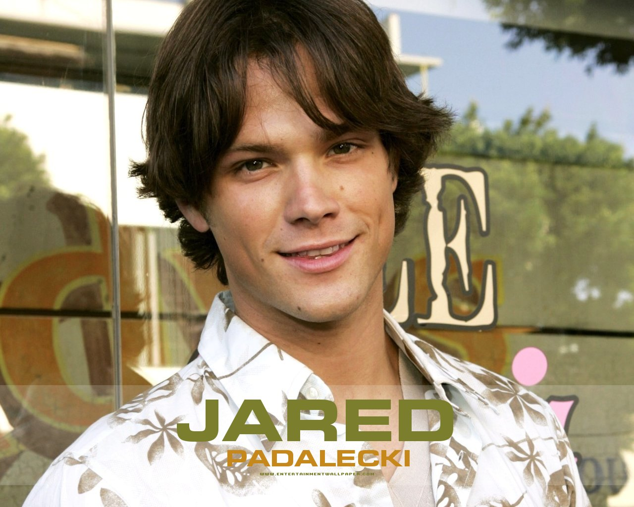 Jared Padalecki - Wallpaper Colection