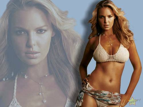 Katherine Heigl wallpaper called Katherine Heigl