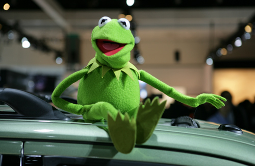 The Muppets वॉलपेपर titled Kermit the Frog