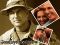 ncis - L.J. Gibbs wallpaper