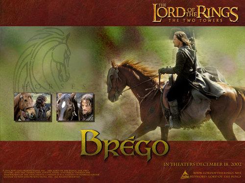 Brego - LOTR wallpaper