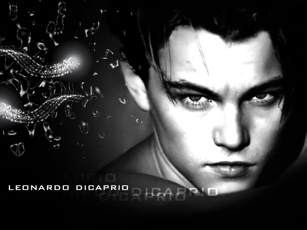 Look at our Leonardo di Caprio