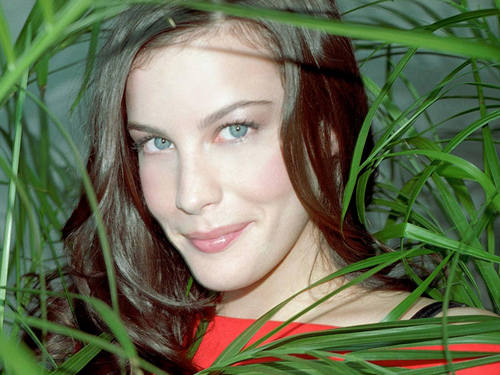 Liv Tyler Обои called Liv Tyler