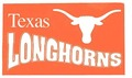 Longhorns Flag