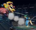 Lyn - super-smash-bros-brawl photo